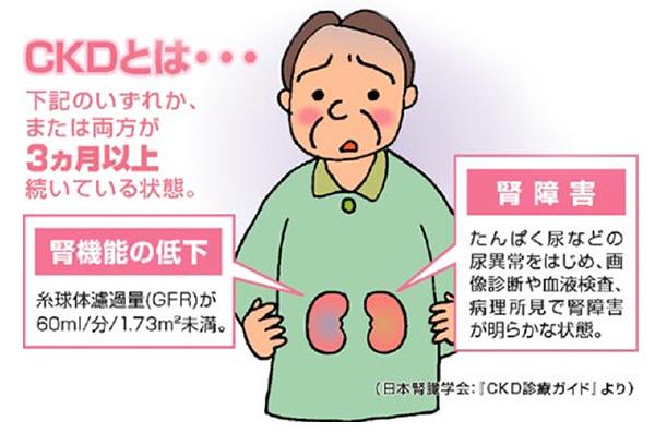 nephrology_about-1